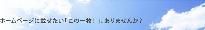 石川県ソフトボール協会メールフォーム