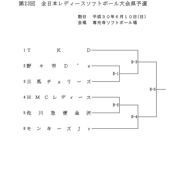 全日本レディース
